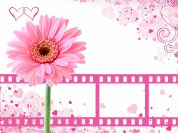 pink-background-with-film-clips